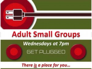 Adult Small Group
